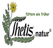 thetis-logo-color-schrift